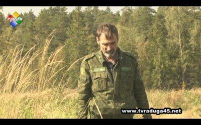Василий Богатырев – главный хранитель павловопосадского лесного богатства