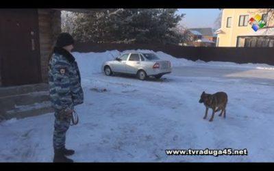 «Студенческий десант» высадился в Павлово-Посадском отделе полиции