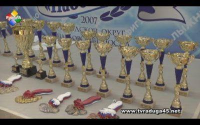 Чемпионат и Первенство федерации стилевого каратэ МО по кумитэ