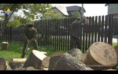 Павловопосадским ветеранам помогают запастись дровами