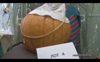 Павловопосадские ветераны  провели благотворительный аукцион «Удар по санкциям»