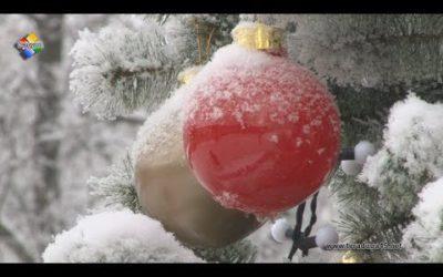 В Павловском Посаде подвели итоги конкурса на лучшее новогоднее оформление