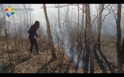 Ученицы школы № 9 помогли потушить горящее поле