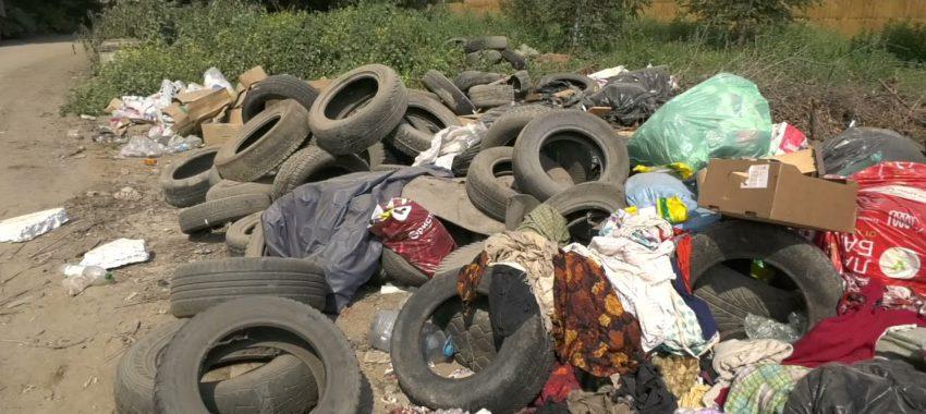 Рейд по выявлению незаконного сброса мусора прошел в Павловском Посаде